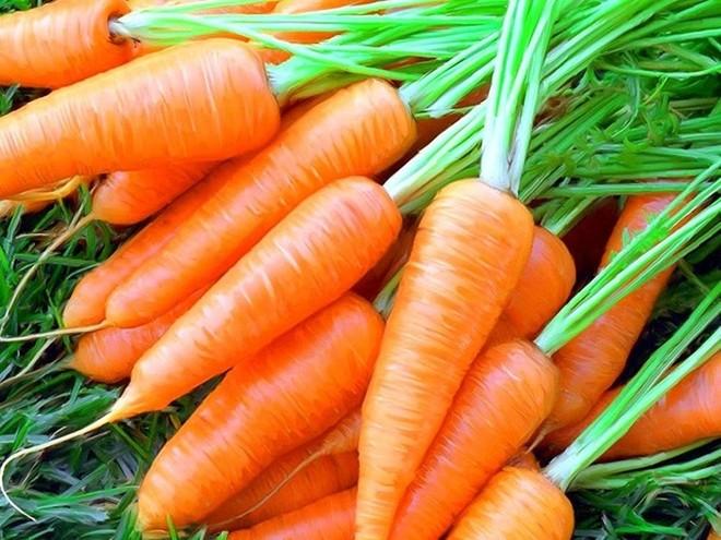Можно ли морковь при грудном вскармливании
