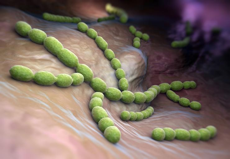Стрептококковая инфекция у детей 17