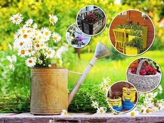 Маленький сад: 10 идей необычных клумб, которые может повторить каждый