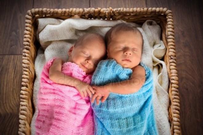 Близнецы или двойняшки: в чем разница