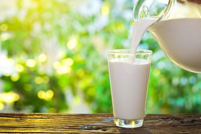 В каких продуктах содержится лактоза