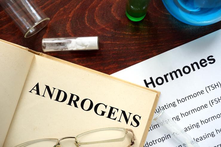 андрогены у женщин