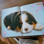Дочь хочет именно этого, с картинки :)