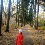 Прогулка в Бирюлевском дендропарке