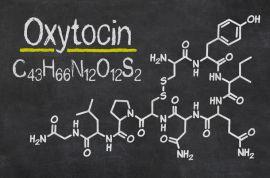 Механизм действия окситоцина при родах и возможные противопоказания