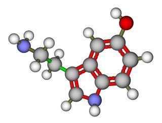 Позитивное меню: в каких продуктах содержится серотонин