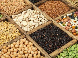 Диетолог пояснил, как на самом деле нужно употреблять в пищу крупы, орехи и бобовые