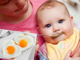 Чтобы не было аллергии: нутрициолог пояснил, яйца каких птиц стоит вводить в прикорм