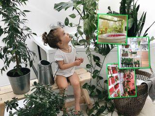 Вечная красота: как сделать зимний сад у себя дома