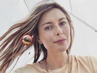 На пальчике то самое колечко: Мария Шарапова станет женой друга принца Гарри?