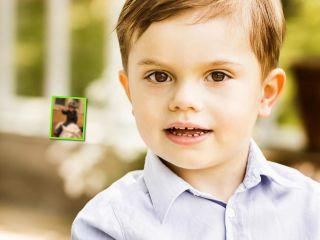 4-летний принц Швеции продемонстрировал оригинальный новогодний... костюм