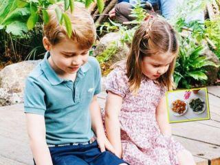 На радость сладкоежкам: по какому рецепту дети Кейт Миддлтон готовят домашние леденцы