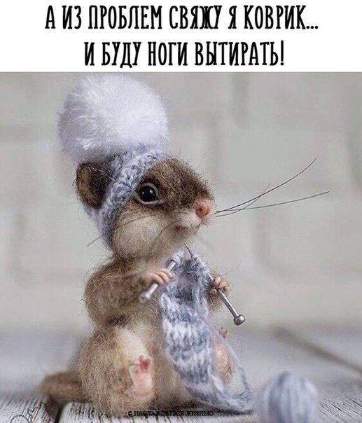 Совет дня )