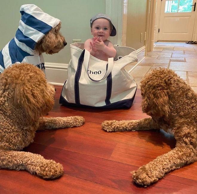 Вот так няня: пес помогает маме уложить спать ее 8-месячного сына