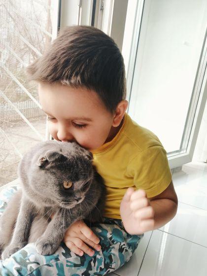 Животные, это лучшие друзья